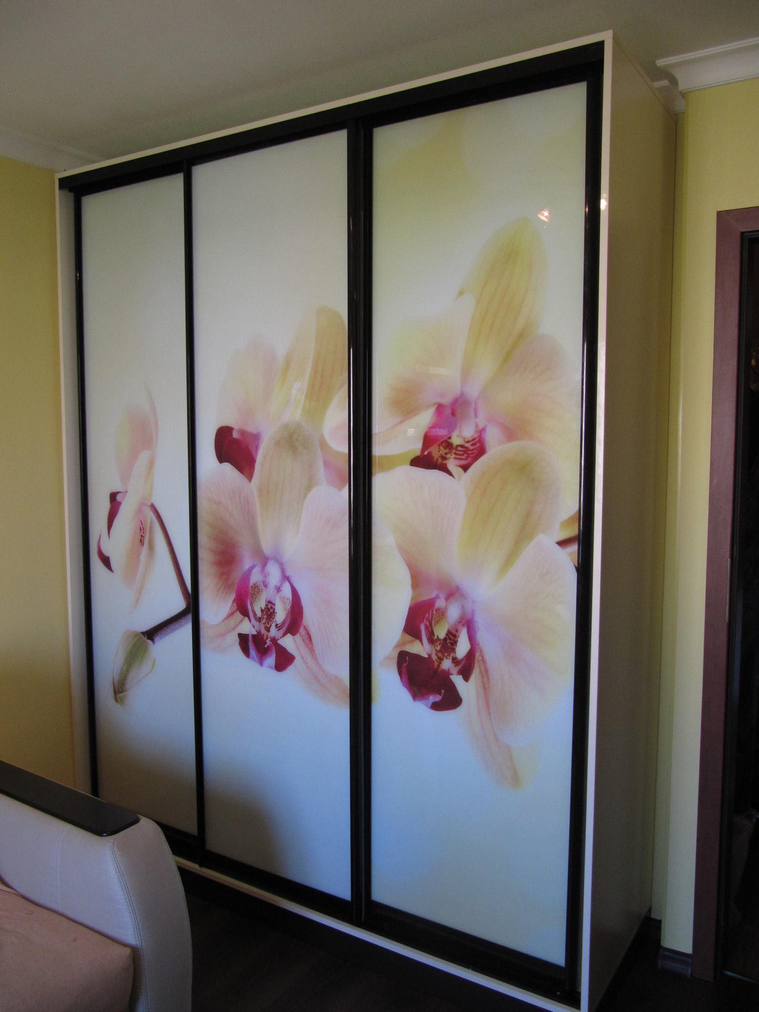 Шкафы купе с орхидеями
